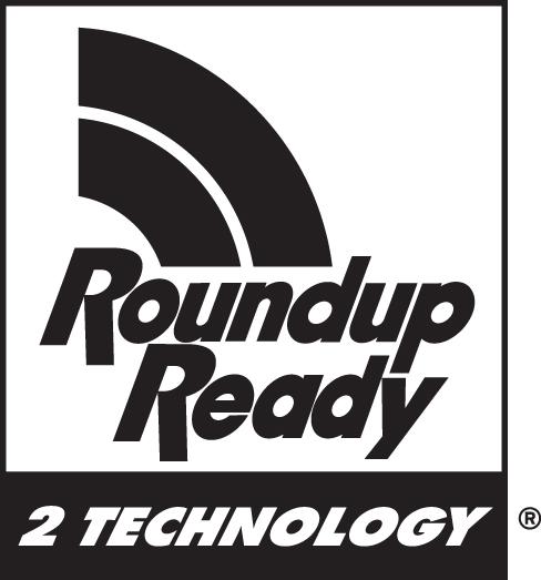 RR2_Technology_CMYK_C-1